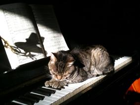 Kees op de piano
